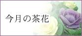 今月の茶花